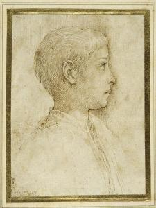 Bust of a Boy in Profile to the Right by Parmigianino