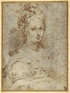 Half-Length of a Seated Woman by Parmigianino