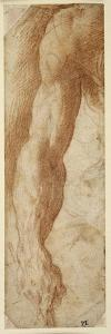 Study of a Man's Right Arm, His Hand Holding a Stick by Parmigianino