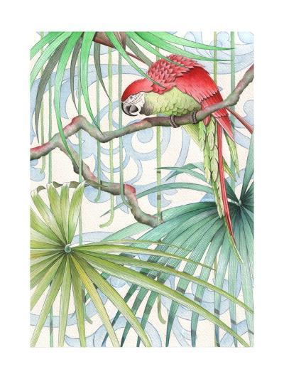 Parrot, 2008-Jenny Barnard-Giclee Print