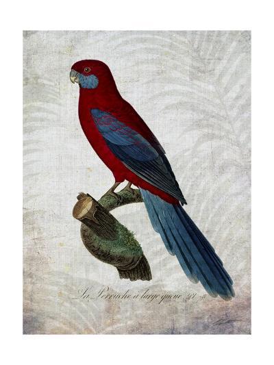 Parrot Jungle II-John Butler-Art Print