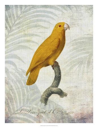 Parrot Jungle V-John Butler-Giclee Print