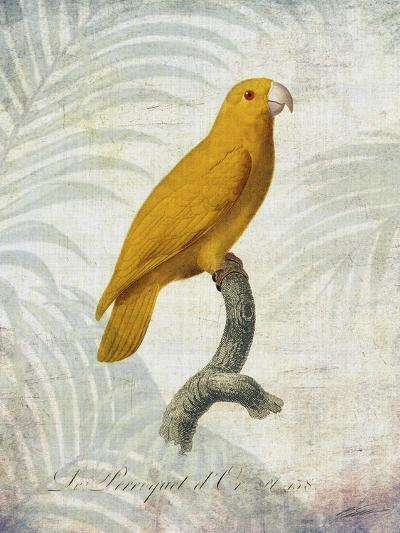 Parrot Jungle V-John Butler-Art Print