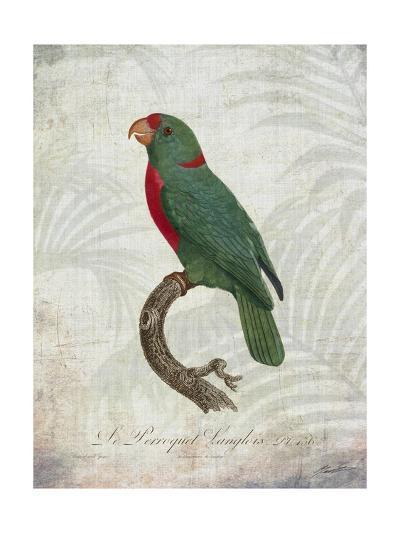 Parrot Jungle VI-John Butler-Art Print