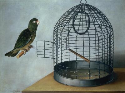 Parrot Outside His Cage-Cornelis Biltius-Giclee Print
