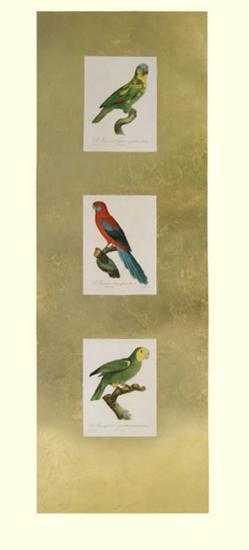 Parrot Panel II-Jacques Barraband-Art Print