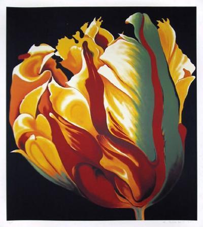 Parrot Tulip I-Lowell Nesbitt-Limited Edition