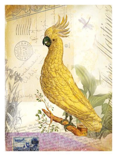 Parrot--Giclee Print