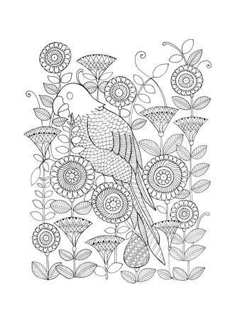 https://imgc.artprintimages.com/img/print/parrot_u-l-q11ttp30.jpg?p=0