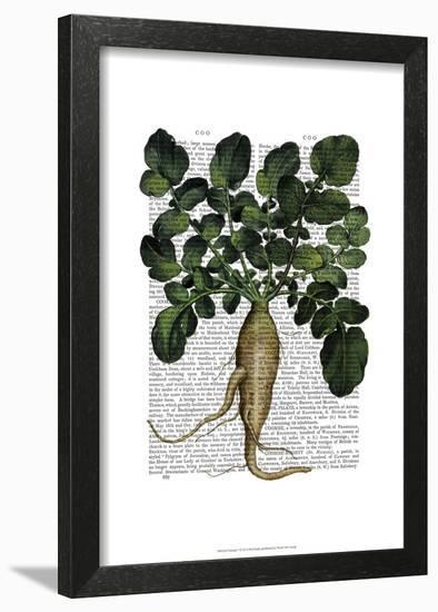 Parsnip 1-Fab Funky-Framed Art Print