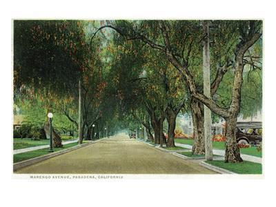 https://imgc.artprintimages.com/img/print/pasadena-california-view-down-marengo-avenue_u-l-q1gpaje0.jpg?p=0