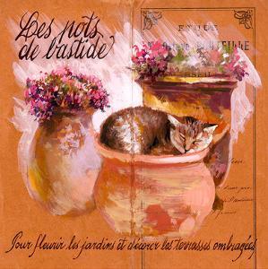 Pots bastide rose by Pascal Cessou
