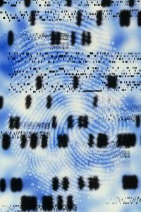 Artwork of DNA Sequences And a Human Fingerprint by PASIEKA