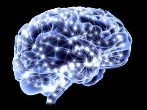 Brain, Neural Network by PASIEKA