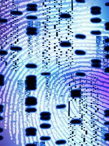 DNA Analysis by PASIEKA