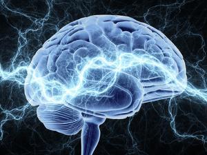Human Brain, Conceptual Artwork by PASIEKA