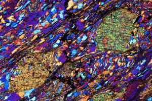 Mica Schist, Thin Section, Polarised LM by PASIEKA
