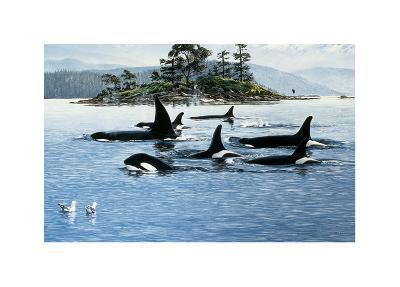Passing Through-Orcas-Andrew Kiss-Art Print