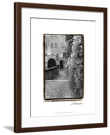 Passing through Prague II-Laura Denardo-Framed Art Print