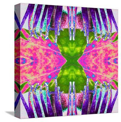 Passion Flower X2-Rose Anne Colavito-Stretched Canvas Print