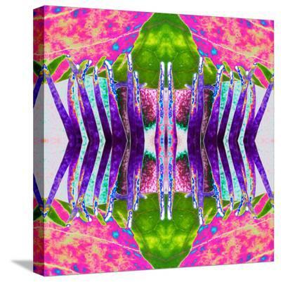 Passion Flower-Rose Anne Colavito-Stretched Canvas Print