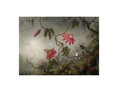 Passion Flowers and Hummingbirds, about 1870-83-Martin Johnson Heade-Art Print