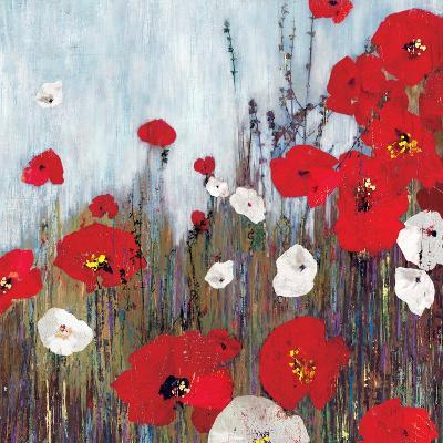 Passion Poppies II-Andrew Michaels-Art Print
