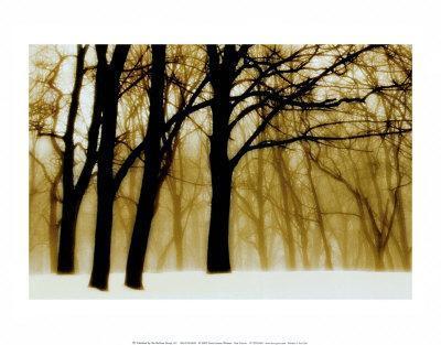 https://imgc.artprintimages.com/img/print/past-dreams_u-l-ehp560.jpg?p=0