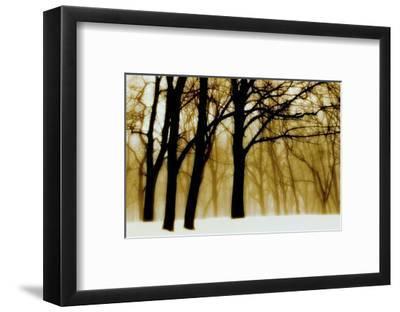 Past Dreams-David Winston-Framed Art Print