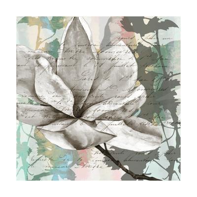 https://imgc.artprintimages.com/img/print/pastel-magnolias-ii_u-l-pqguzx0.jpg?p=0