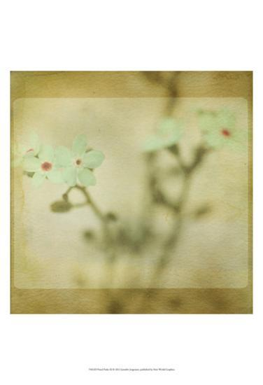 Pastel Paths XI-Jennifer Jorgensen-Art Print