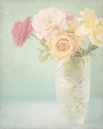 Pastel Roses-Shana Rae-Giclee Print