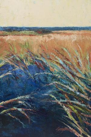 https://imgc.artprintimages.com/img/print/pastel-wetlands-ii_u-l-q11advt0.jpg?p=0