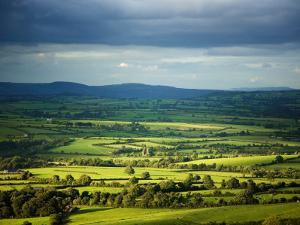 Pastoral Fields, Near Clonea, County Waterford, Ireland