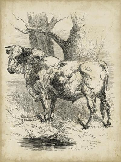 Pastoral Sketch II--Art Print