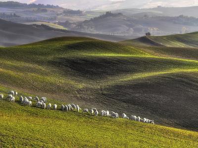 Pastoral-Roman Lipinski ?-Photographic Print