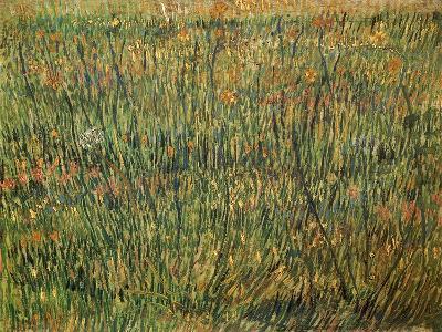 Pasture in Bloom, 1887-Vincent van Gogh-Giclee Print