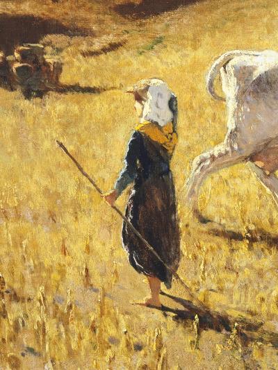 Pastures in Castiglioncello, 1861-Telemaco Signorini-Giclee Print