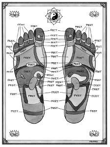 """A diagram of parts of the foot, with each part labeled """"feet."""" - New Yorker Cartoon by Pat Byrnes"""