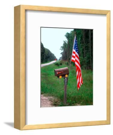 American Flag on Rural Mailbox, North Florida