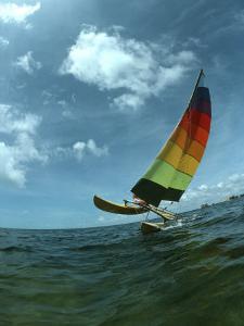 Catamaran Sailing, Biscayne Bay, Miami, FL by Pat Canova