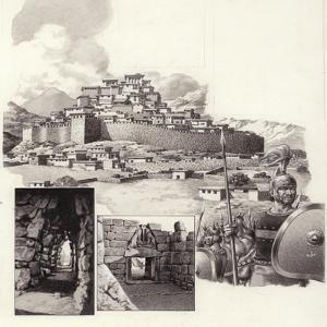 The Fortress of Mycenae by Pat Nicolle