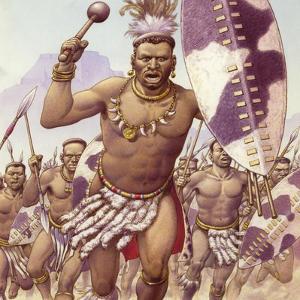 Zulu Warrior by Pat Nicolle