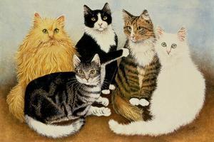 Cat's Cradle by Pat Scott