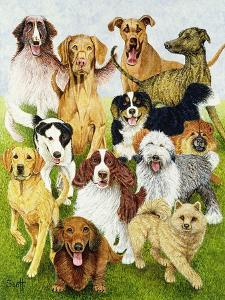 Dog Days by Pat Scott