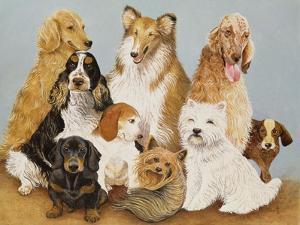 Dogs' Dinner by Pat Scott