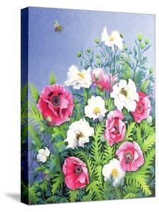 Honey Bee, Honey Bee by Pat Scott