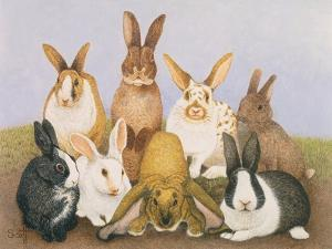 Lucky Rabbits by Pat Scott