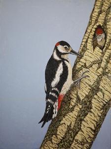 Red Headed Woodpecker, 2016 by Pat Scott