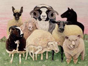 Shepherds Delight by Pat Scott